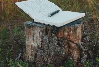 Libro blanco. Foto por Nick Brookenheimer en Unsplash